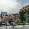 A pedestrian crossing in front of the Bank of Japan.